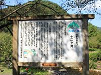 Guidance signboard