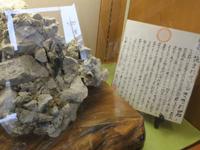珍しいさざれ石