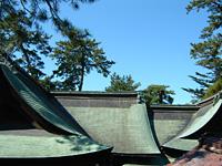 銅板葺の屋根の色合いと絶妙な 曲線が美しい