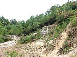 花坡九谷原石山