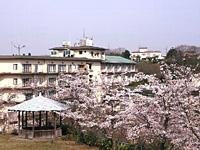 25000坪の庭園に約千本の桜が。
