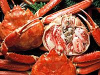 冬場は活蟹の懐石料理がオススメ