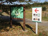 絆の森遊歩道も人気