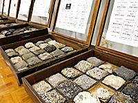岩石や鉱物がずらり